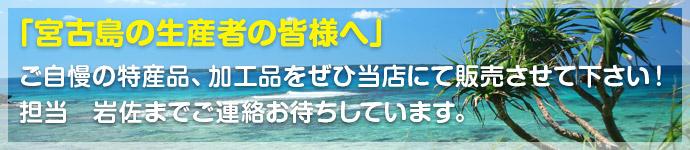 宮古島マンゴー組合